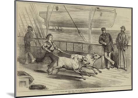 The Prince's Voyage Home from India, Life on Board the Serapis, Exercising the Gainees-Arthur Hopkins-Mounted Giclee Print