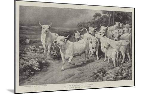 The Wild Cattle of Chillingham-Basil Bradley-Mounted Giclee Print