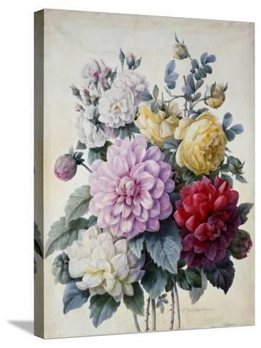 Bouquet of Flowers, Dahlias and Roses, Published C.1830-40 (Stipple Hand Coloured)-Camille de Chantereine-Stretched Canvas Print