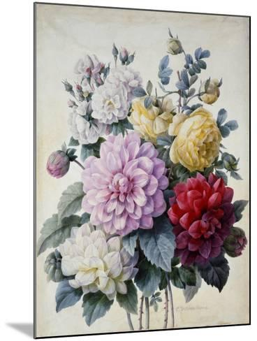 Bouquet of Flowers, Dahlias and Roses, Published C.1830-40 (Stipple Hand Coloured)-Camille de Chantereine-Mounted Giclee Print