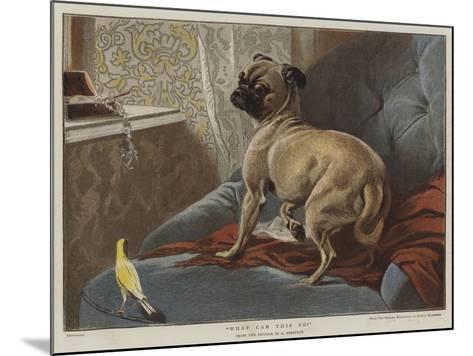 What Can This Be?-Carl Constantin Steffeck-Mounted Giclee Print
