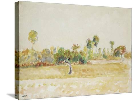 Study of the Orchard at Eragny-Sur-Epte, Seen from the Artist's House, C. 1886 - 1890-Camille Pissarro-Stretched Canvas Print