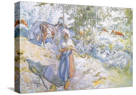Last of All Came Little Kertsi with a Willow Twig to Drive the Cows-Carl Larsson-Stretched Canvas Print
