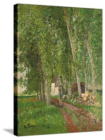 Undergrowth at Moret, 1902-Camille Pissarro-Stretched Canvas Print