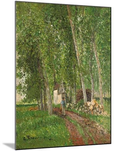 Undergrowth at Moret, 1902-Camille Pissarro-Mounted Giclee Print