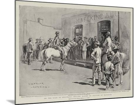 On the Road to Bulawayo, Selling Horses by Auction at Mafeking-Charles Edwin Fripp-Mounted Giclee Print