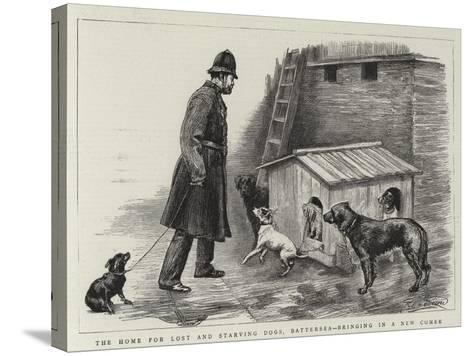 The Home for Lost and Starving Dogs, Battersea, Bringing in a New Comer-Charles Paul Renouard-Stretched Canvas Print
