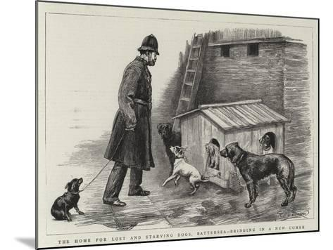 The Home for Lost and Starving Dogs, Battersea, Bringing in a New Comer-Charles Paul Renouard-Mounted Giclee Print