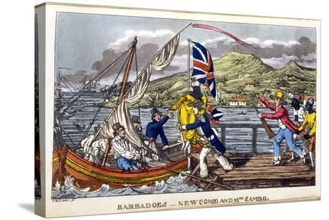Barbados: Newcome and Mrs Sambo-Charles Williams-Stretched Canvas Print