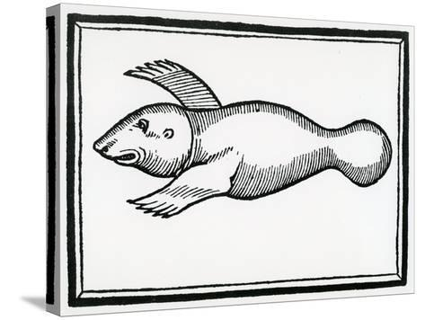 A Fish Called 'Manati' from 'La Historia General De Las Indias' 1547-Christopher Columbus-Stretched Canvas Print
