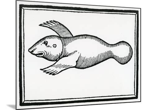 A Fish Called 'Manati' from 'La Historia General De Las Indias' 1547-Christopher Columbus-Mounted Giclee Print