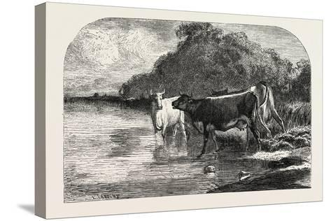 Cows at the Watering Hole, 1855-Constant-emile Troyon-Stretched Canvas Print