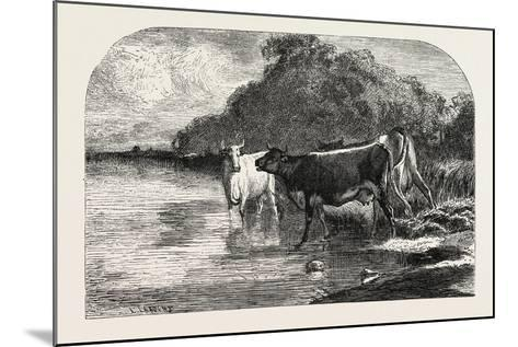 Cows at the Watering Hole, 1855-Constant-emile Troyon-Mounted Giclee Print