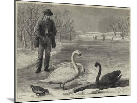 Frozen Out-Ebenezer Newman Downard-Mounted Giclee Print