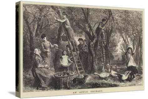An Apple Orchard-Ebenezer Newman Downard-Stretched Canvas Print