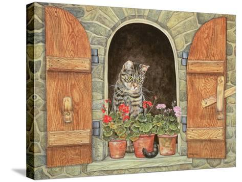 Susie's Window-Ditz-Stretched Canvas Print