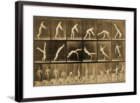 Plate from 'Animal Locomotion' Series, C.1887-Eadweard Muybridge-Framed Art Print