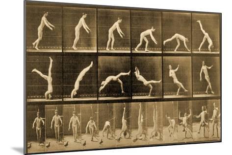 Plate from 'Animal Locomotion' Series, C.1887-Eadweard Muybridge-Mounted Giclee Print