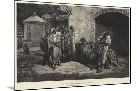 The Marabout (Sacred) Lion, Algiers-Eugene Pavy-Mounted Giclee Print
