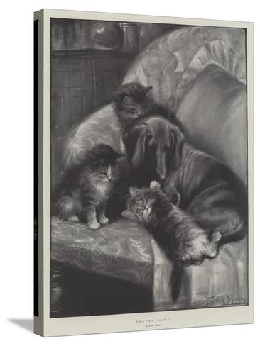 Velvet Paws-Fannie Moody-Stretched Canvas Print