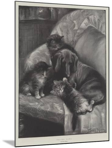 Velvet Paws-Fannie Moody-Mounted Giclee Print