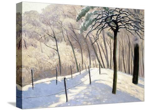 Snowy Landscape in Bois De Boulogne; Paysage De Neige Au Bois De Boulogne, 1905-Felix Edouard Vallotton-Stretched Canvas Print