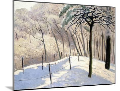 Snowy Landscape in Bois De Boulogne; Paysage De Neige Au Bois De Boulogne, 1905-Felix Edouard Vallotton-Mounted Giclee Print