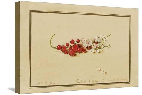 Red and White Currants, 1818-Fedor Petrovich Tolstoy-Stretched Canvas Print
