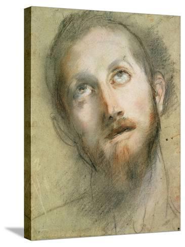 Study for the Head of Christ-Federico Fiori Barocci-Stretched Canvas Print