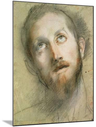 Study for the Head of Christ-Federico Fiori Barocci-Mounted Giclee Print