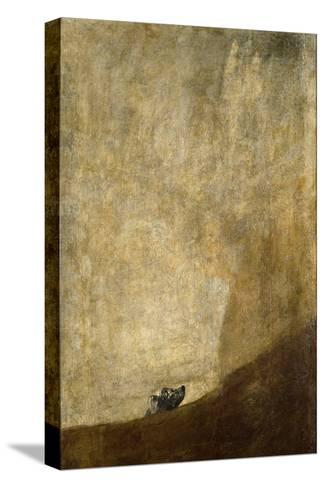The Dog, 1820-23-Francisco de Goya-Stretched Canvas Print