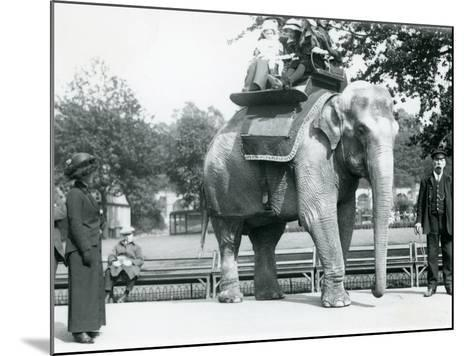 Female Indian Elephant 'Lukhi' Giving Children a Ride with Keeper Charles Eyles-Frederick William Bond-Mounted Photographic Print