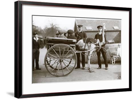 An Ostrich Cart Ride with Children and Keepers George Blore and William Dexter at London Zoo-Frederick William Bond-Framed Art Print