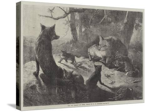 The Fox Family at Home-George Bouverie Goddard-Stretched Canvas Print