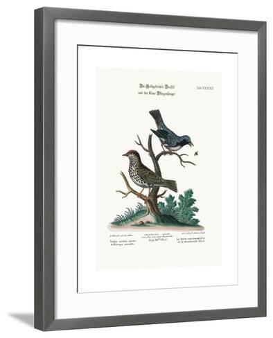 The Golden-Crowned Thrush and the Blue Flycatcher, 1749-73-George Edwards-Framed Art Print