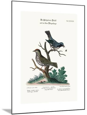 The Golden-Crowned Thrush and the Blue Flycatcher, 1749-73-George Edwards-Mounted Giclee Print