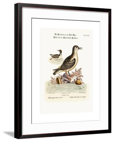 The Puffin of the Isle of Man, and the Guillemot, 1749-73-George Edwards-Framed Art Print