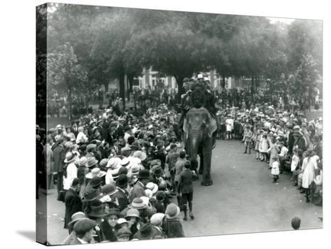 Crowds of Visitors Watch an Elephant Ride at London Zoo, August Bank Holiday, 1922-Frederick William Bond-Stretched Canvas Print