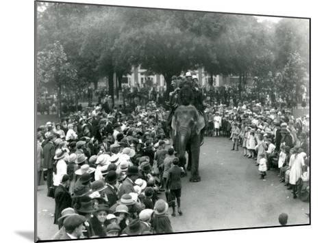 Crowds of Visitors Watch an Elephant Ride at London Zoo, August Bank Holiday, 1922-Frederick William Bond-Mounted Photographic Print