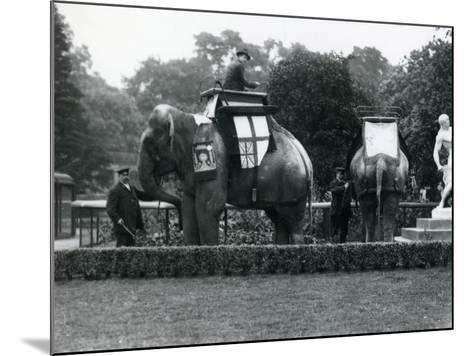 Riding Elephants Bedecked for the Peace Day Celebrations, 19th July 1919-Frederick William Bond-Mounted Photographic Print