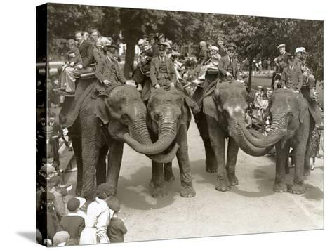 Elephant Rides at London Zoo, July 1936-Frederick William Bond-Stretched Canvas Print