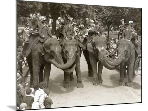 Elephant Rides at London Zoo, July 1936-Frederick William Bond-Mounted Photographic Print