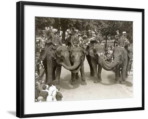 Elephant Rides at London Zoo, July 1936-Frederick William Bond-Framed Art Print