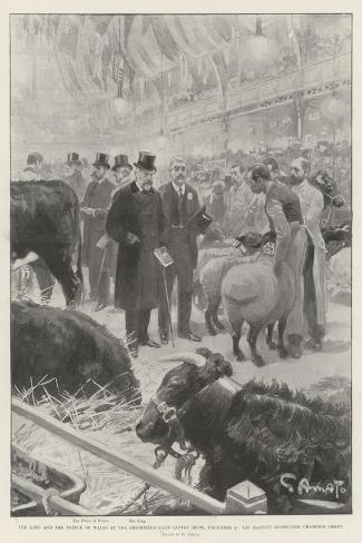 The King and the Prince of Wales at the Smithfield Club Cattle Show-G.S. Amato-Stretched Canvas Print