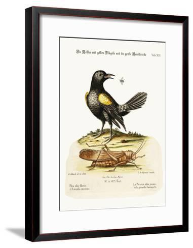 The Yellow-Winged Pye, and Greatest Locust, 1749-73-George Edwards-Framed Art Print