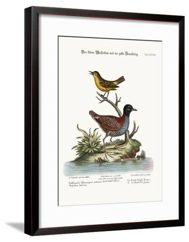The Least Water-Hen, and the Yellow Wren, 1749-73-George Edwards-Framed Art Print