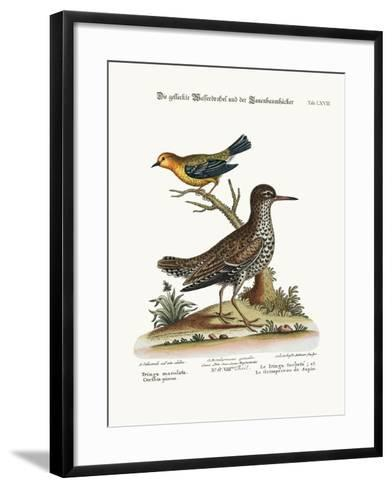 The Spotted Tringa, and the Pine-Creeper, 1749-73-George Edwards-Framed Art Print