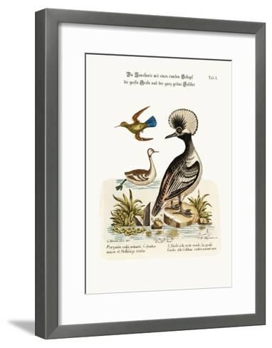 The Round-Crested Duck, the Greater Dobchick, and the All-Green Hummingbird, 1749-73-George Edwards-Framed Art Print