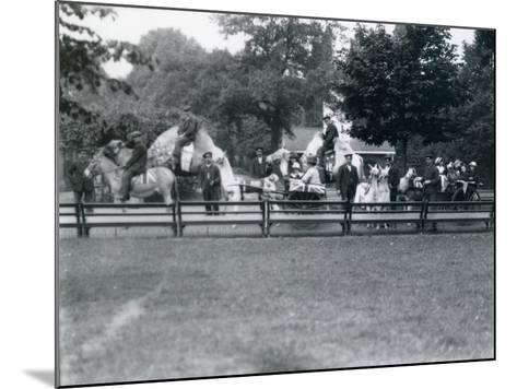 Riding Animals Bedecked for the Peace Day Celebrations, 19th July 1919-Frederick William Bond-Mounted Photographic Print