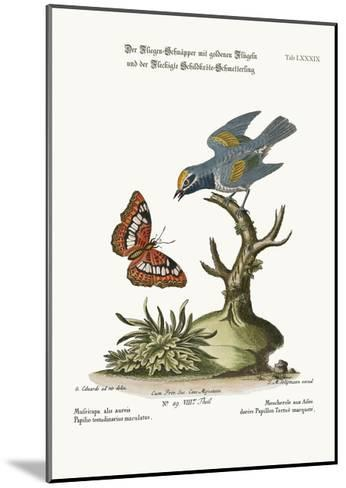 The Golden-Winged Flycatcher, and the Spotted Tortoise Butterfly, 1749-73-George Edwards-Mounted Giclee Print